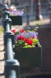 Fleurs photos libres de droits