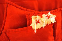 Fleurs Images stock
