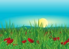 Fleurs. illustration de vecteur