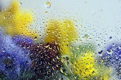 Fleurs après glace Photographie stock libre de droits