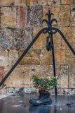 Fleurs au-dessus d'un puits d'eau dans Monteriggioni dans la province de Sienne photographie stock libre de droits