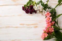 Fleurs au-dessus du fond en bois D'en haut Photo stock