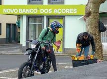 Fleurs aux Açores photographie stock