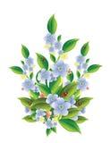 Fleurs avec des coccinelles Images libres de droits