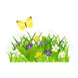 Fleurs avec l'herbe et le papillon Image libre de droits