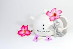 Fleurs avec la théière Photos stock