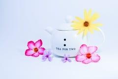 Fleurs avec la théière Images stock