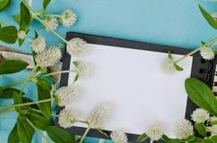 Fleurs blanches d'amaranthe de globe sur le livre Image libre de droits