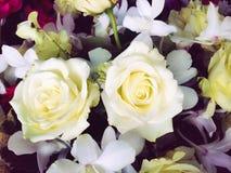 Fleurs blanches dans le style de vintage Images libres de droits