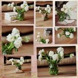 Fleurs blanches de collage Photo stock