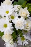 Fleurs blanches et vertes Images libres de droits