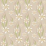 Fleurs blanches sans fin Image libre de droits