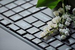 Fleurs blanches sur le clavier d'ordinateur Image stock