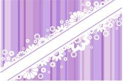 Fleurs blanches sur les bandes illustration libre de droits
