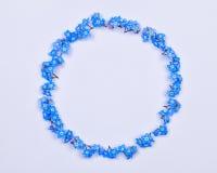 Fleurs bleues de myosotis disposées sur un cercle Photos stock