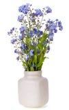 Fleurs bleues de ressort mini Photo libre de droits