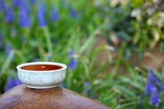 Fleurs chinoises noires de jardin de thé Photo stock