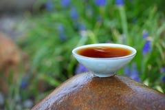Fleurs chinoises noires de jardin de thé Photographie stock