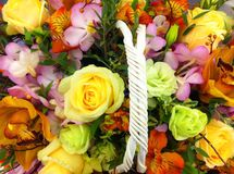 Fleurs colorées Photographie stock