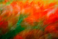 Fleurs colorées abstraites Image stock