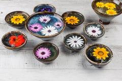 Fleurs colorées dans des cuvettes en céramique Image libre de droits