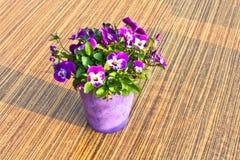 Fleurs colorées dans un bac sur la table image stock