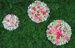 Fleurs colorées de contexte Image stock