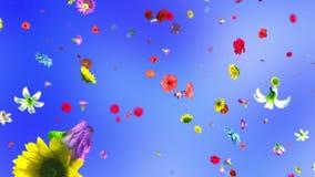 Fleurs colorées de explosion dans 4K illustration stock