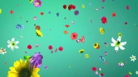 Fleurs colorées de explosion dans 4K illustration libre de droits