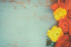 Fleurs colorées de ressort sur le fond en bois bleu Image stock
