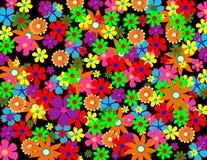 Fleurs colorées de source illustration libre de droits