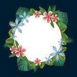 Fleurs colorées et feuilles d'été tropical Photos stock