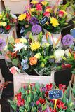 Fleurs colorées sur le marché Photos stock
