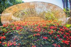 Fleurs colorées sur les grands paniers en bambou chez Mae Fah Luang Garden, Chiang Rai, Thaïlande Jardin des fleurs froides d'hiv Photographie stock libre de droits