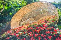 Fleurs colorées sur les grands paniers en bambou chez Mae Fah Luang Garden, Chiang Rai, Thaïlande Jardin des fleurs froides d'hiv Photos stock