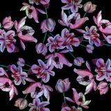 Fleurs - composition décorative watercolor Configuration sans joint Illustration Stock