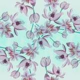 Fleurs - composition décorative watercolor Configuration sans joint Employez les matériaux imprimés, signes, articles, sites Web, illustration de vecteur