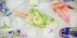 Fleurs congelées en glaçons et crème glacée sur un bâton Photographie stock