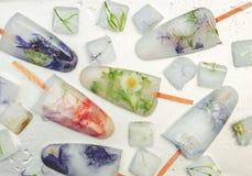 Fleurs congelées en glaçons et crème glacée sur un bâton Photographie stock libre de droits