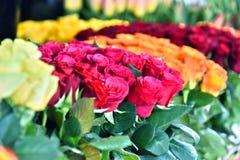 Fleurs coupées dans le fleuriste photographie stock