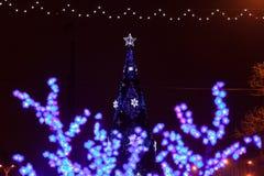 Fleurs décoratives d'ampoules d'arbre d'électricités la soirée du Nouveau an photos stock