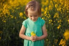 Fleurs d'été de cueillette d'enfant sur le champ jaune Enfants et nature photos stock