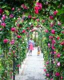 Fleurs d'Alhambra images libres de droits