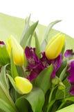 Fleurs d'Alstroemeria image libre de droits