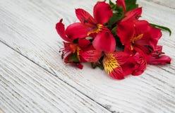 Fleurs d'Alstroemeria sur une table Images stock