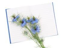 Fleurs d'Amour-dans-un-brume de damascena de Nigella aka sur le carnet mémoire Photos stock