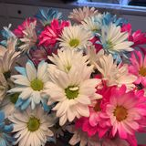 Fleurs d'anniversaire Photos stock