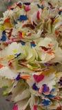 Fleurs d'arc-en-ciel Photographie stock
