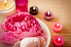 Fleurs d'Aromatherapy et bougies, horizontal Images stock
