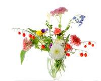 fleurs d'automne Photos libres de droits
